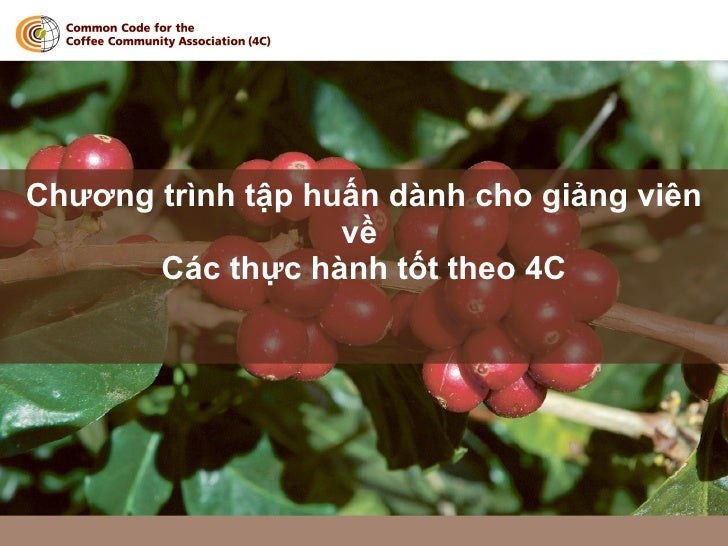 4 C Supp Doc 010 Pres To T Presentation Handout Vietnam 2 2 Vn