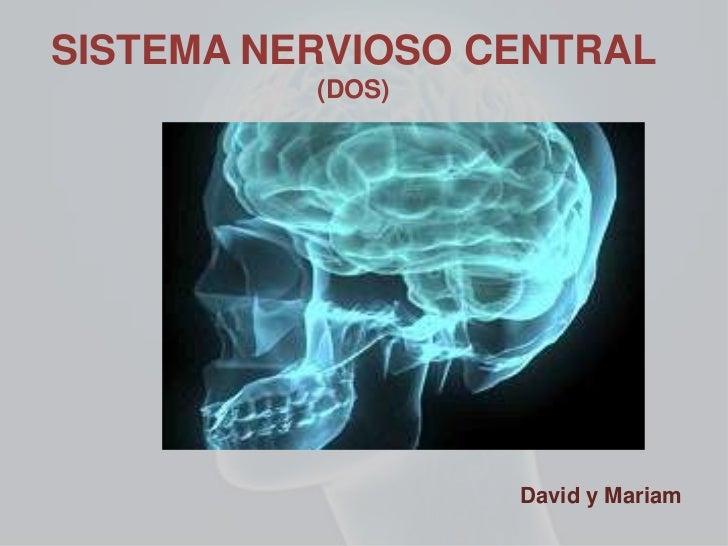 SISTEMA NERVIOSO CENTRAL          (DOS)                  David y Mariam