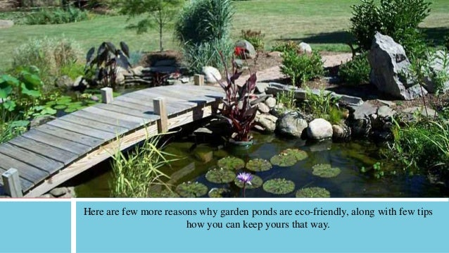 3 benefits eco friendly