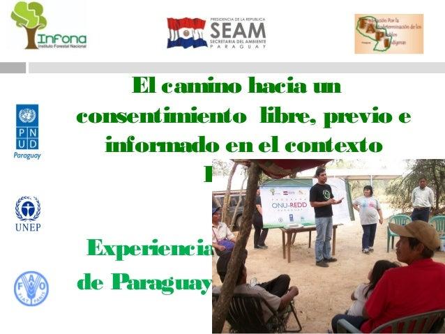 El camino hacia unconsentimiento libre, previo e  informado en el contexto           REDD+ Experienciade Paraguay