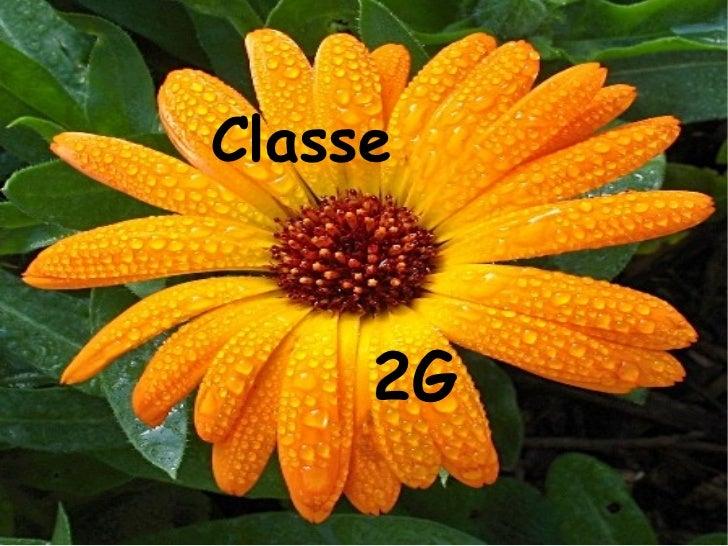 Classe  2G