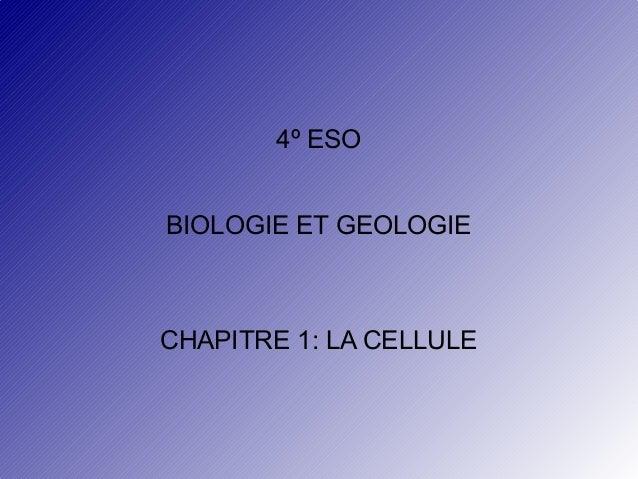 4º ESO BIOLOGIE ET GEOLOGIE  CHAPITRE 1: LA CELLULE