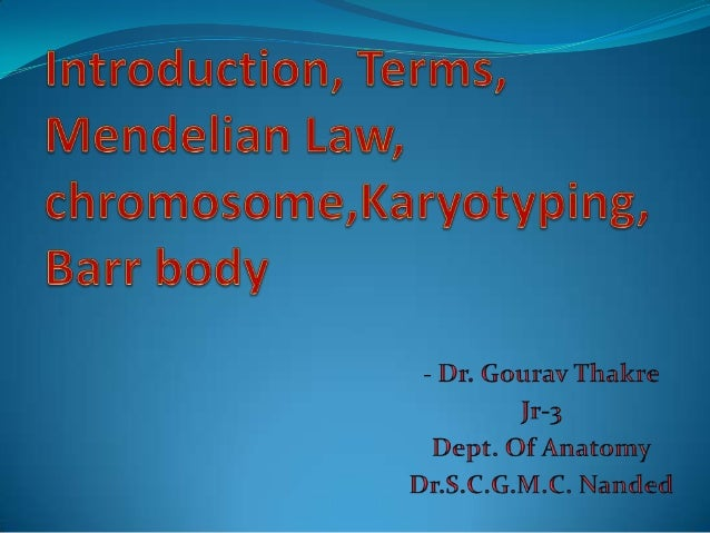introduction, terms, mendelian law, chromosome,karyotyping-Dr.Gourav
