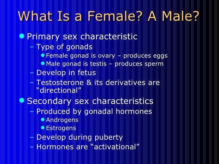 What Is a Female? A Male? <ul><li>Primary sex characteristic </li></ul><ul><ul><li>Type of gonads </li></ul></ul><ul><ul><...