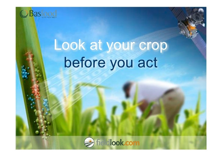 Look at your crop before you act
