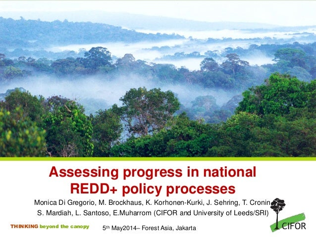 THINKING beyond the canopy Assessing progress in national REDD+ policy processes Monica Di Gregorio, M. Brockhaus, K. Korh...