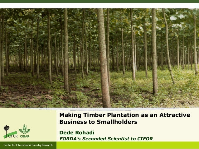 Making Timber Plantation as an Attractive Business to Smallholders Dede Rohadi FORDA's Seconded Scientist to CIFOR