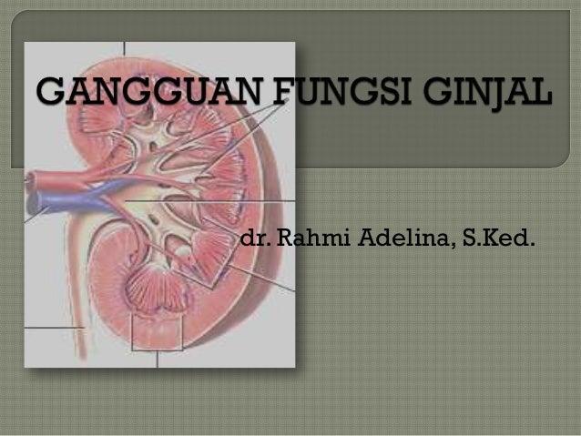 dr. Rahmi Adelina, S.Ked.