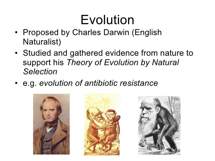 Natural Selection Allows Organisms To Become Better