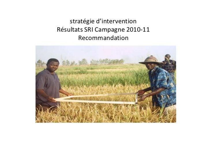 stratégie d'interventionRésultats SRI Campagne 2010-11       Recommandation