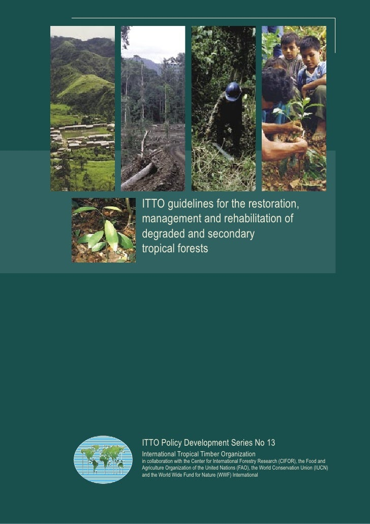 ITTO guidelines for the restoration,management and rehabilitation ofdegraded and secondarytropical forestsITTO Policy Deve...