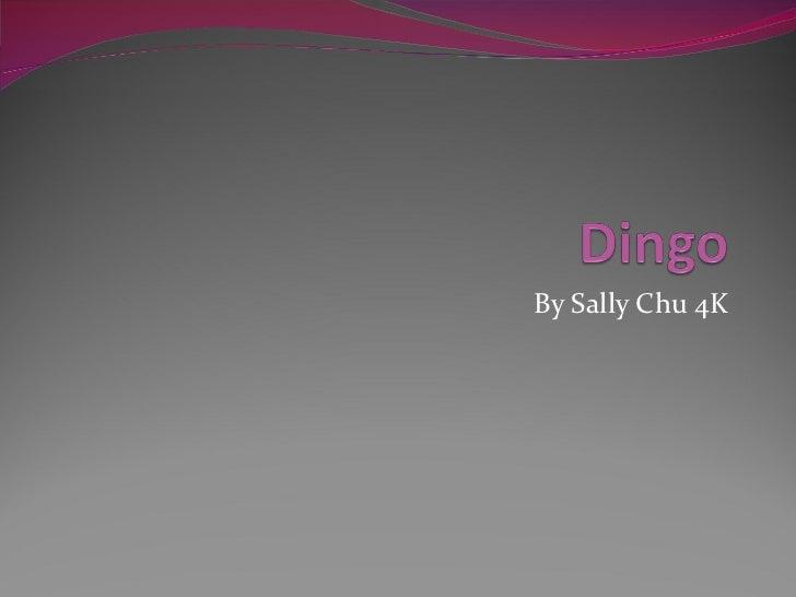 By Sally Chu 4K
