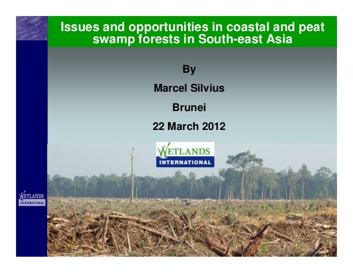 Issues and opportunities in coastal and peat     swamp forests in South-east Asia                    By               Marc...