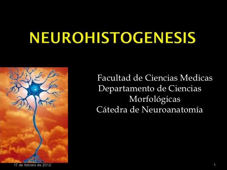 Neurohistogenesis
