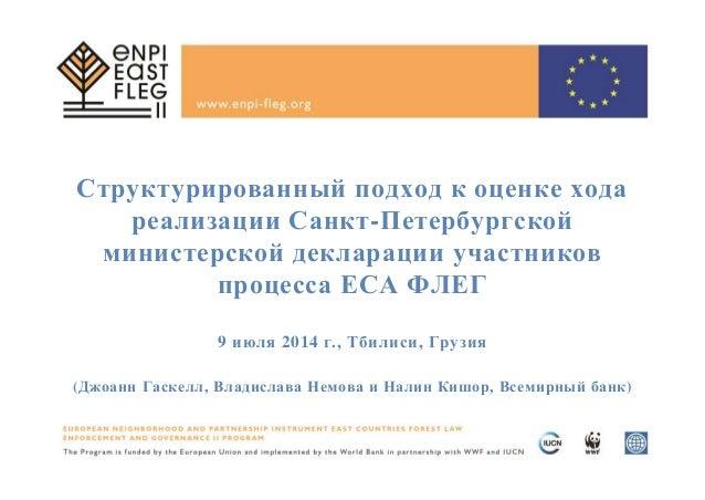 Структурированный подход к оценке хода реализации Санкт-Петербургской министерской декларации участников процесса ЕСА ФЛЕГ...