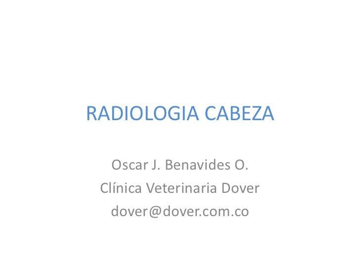 RADIOLOGIA CABEZA   Oscar J. Benavides O. Clínica Veterinaria Dover   dover@dover.com.co
