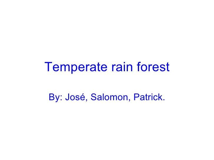 Temperate rain forest By: José, Salomon, Patrick.