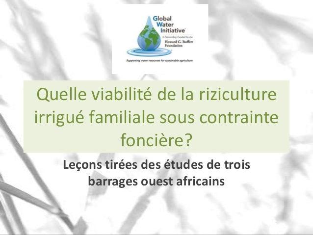 Quelle viabilité de la riziculture irrigué familiale sous contrainte foncière? Leçons tirées des études de trois barrages ...