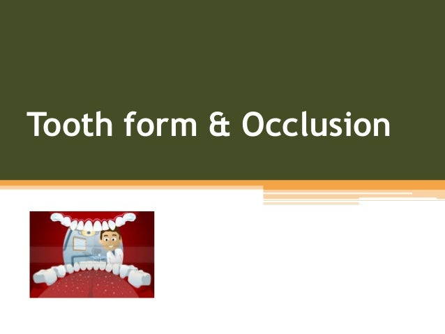 Tooth form & Occlusion