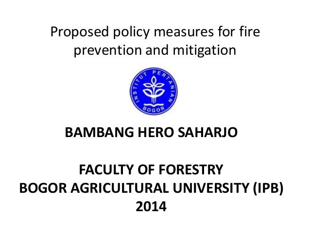 Proposed policy measures for fire prevention and mitigation  BAMBANG HERO SAHARJO FACULTY OF FORESTRY BOGOR AGRICULTURAL U...