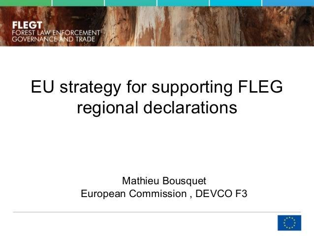 EU strategy for supporting FLEG regional declarations Mathieu Bousquet European Commission , DEVCO F3