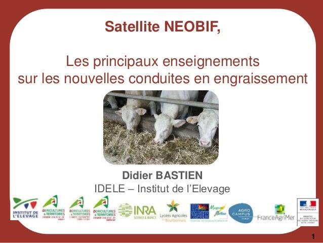 Satellite NEOBIF, Les principaux enseignements sur les nouvelles conduites en engraissement 1 Didier BASTIEN IDELE – Insti...
