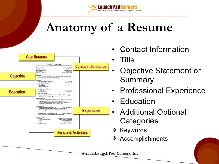 Guidelines for Writing a Professional Resume  SISLT