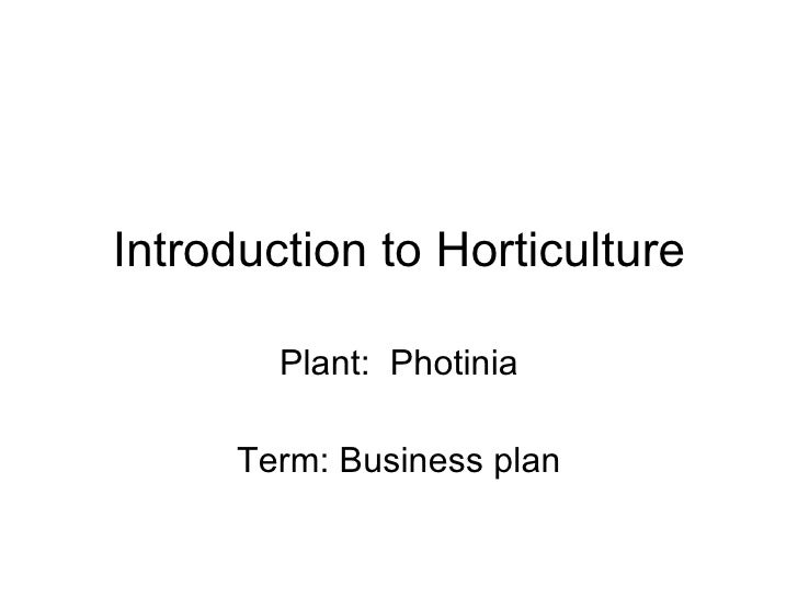 Introduction to Horticulture Plant:  Photinia Term: Business plan