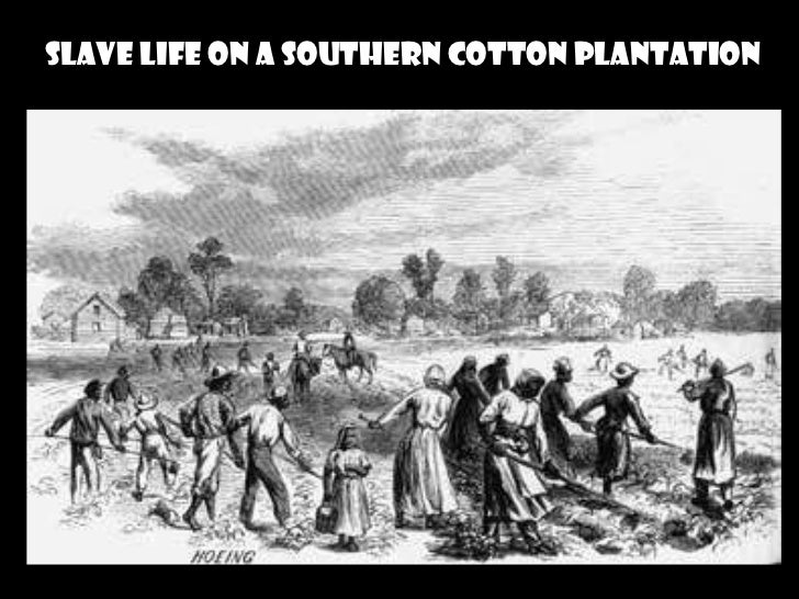Plantations in the American South