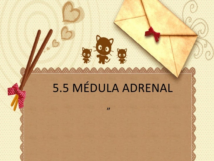 "5.5 MÉDULA ADRENAL """