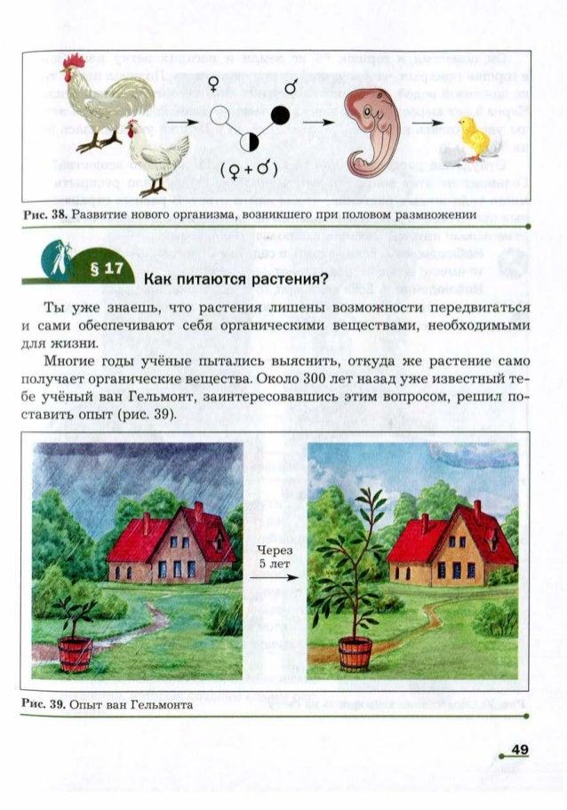 Как питаются растения?