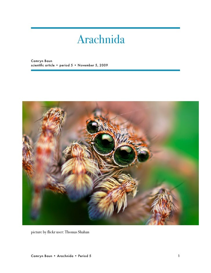 Arachnida Camryn Baun scientific article • period 5 • November 5, 2009     picture by flickr user: Thomas Shahan     Camryn...