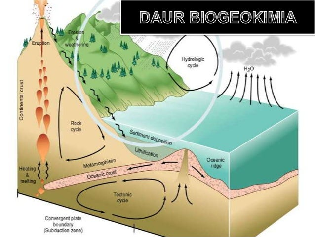Defenisi Daur Biogeokimia Rangkaian perubahan bentuk unsur-unsur kimiayang melibatkan     komponen-komponen   biotik   da...
