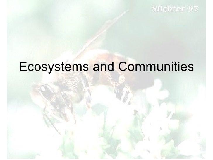 5   Ecosystem