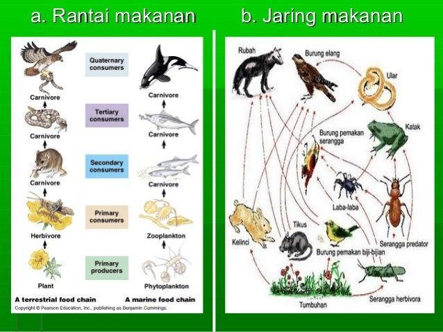 5.ekologi to2 k_revisi