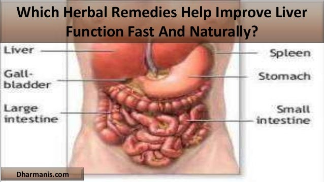 Which Herbal Remedies Help Improve Liver Function Fast And Naturally? Dharmanis.com