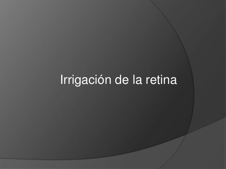 5. irrigación de la retina