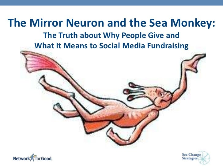 The <br />The Mirror Neuronand the Sea Monkey: The Truth about Why People Give and What It Means to Social Media Fundraisi...