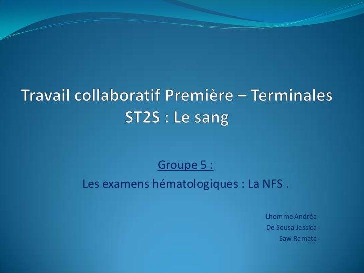 Groupe 5 :Les examens hématologiques : La NFS .                                Lhomme Andréa                              ...