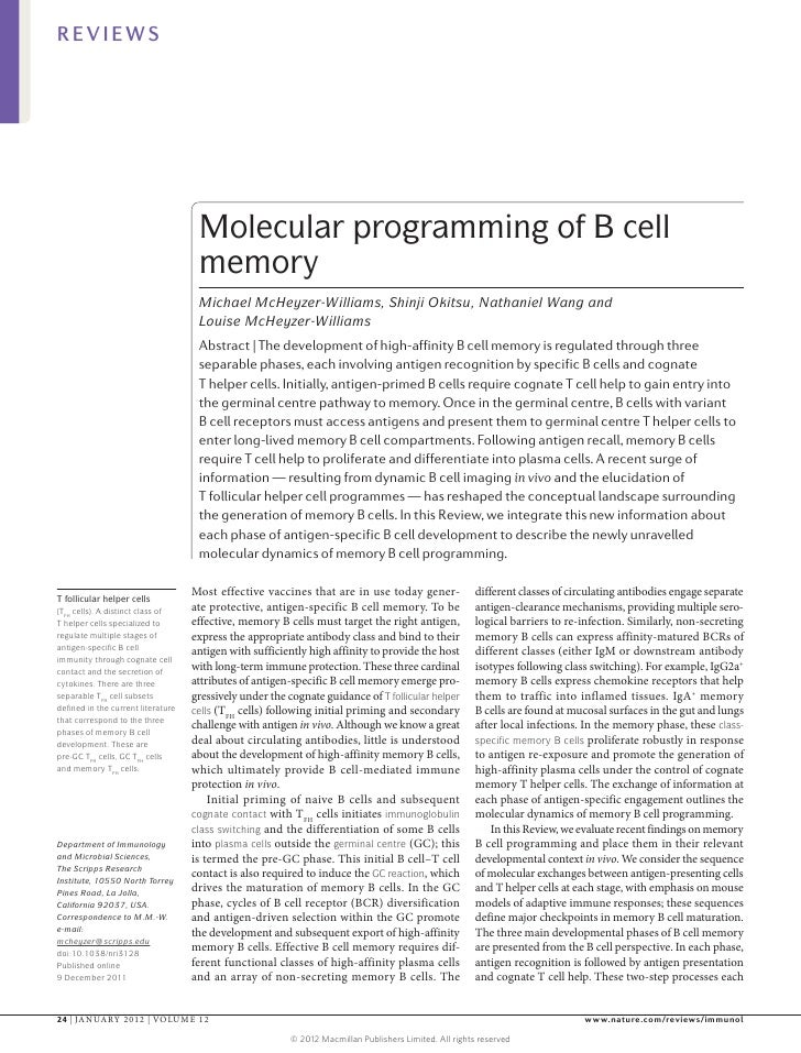REVIEWS                                     Molecular programming of B cell                                     memory    ...