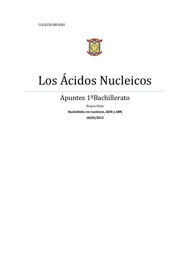 COLEGIO BRAINSLos Ácidos Nucleicos           Apuntes 1ºBachillerato                             Álvaro Peña               ...