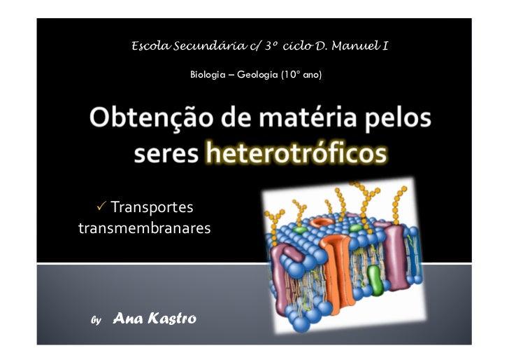 Movimentos Transmembranares