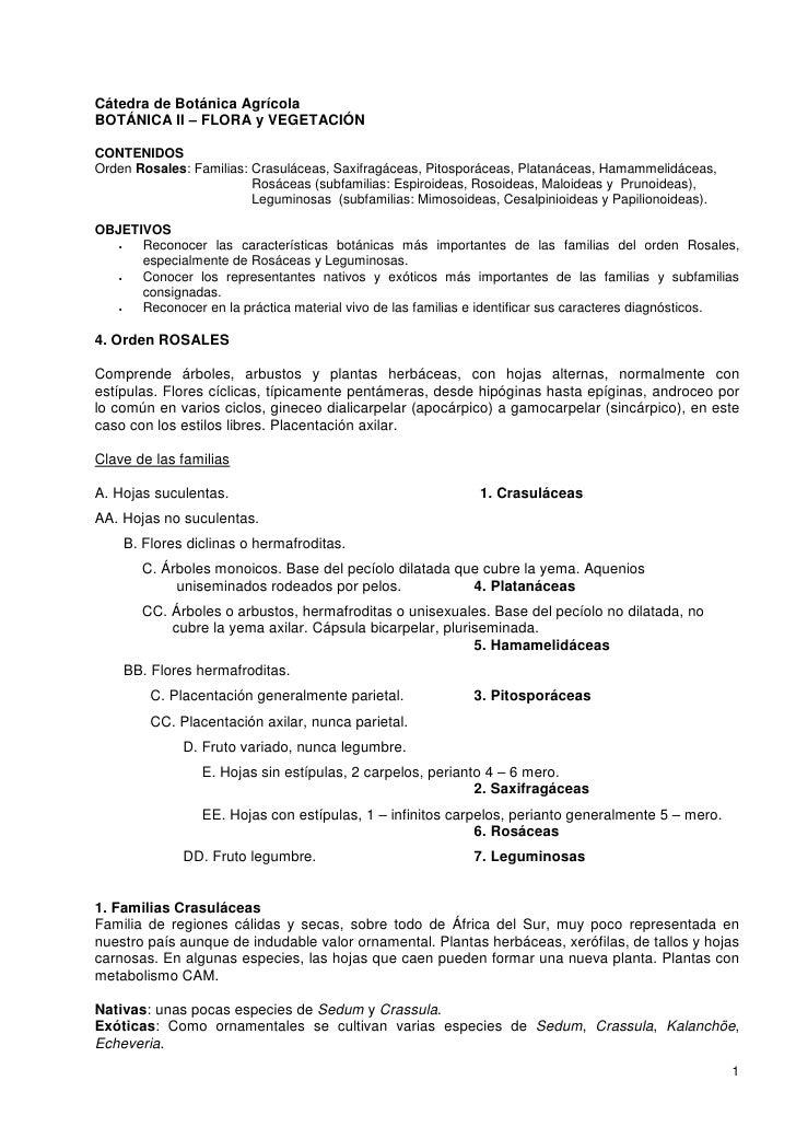 Cátedra de Botánica Agrícola BOTÁNICA II – FLORA y VEGETACIÓN  CONTENIDOS Orden Rosales: Familias: Crasuláceas, Saxifragác...