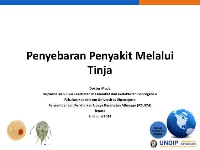 Penyebaran penyakit melalui tinja Koass IKM Jepara 2014
