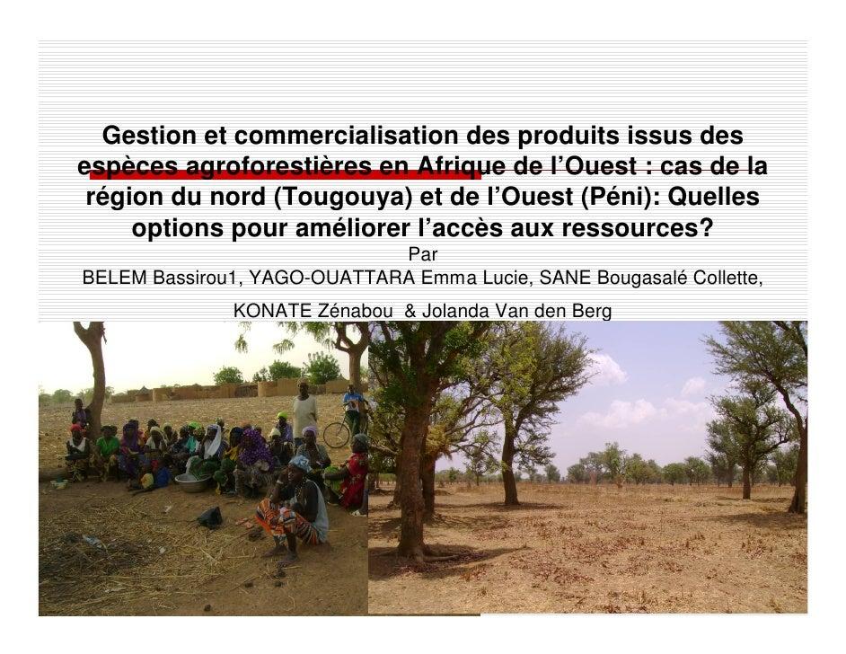 Gestion et commercialisation des produits issus des espèces agroforestières en Afrique de l'Ouest : cas de la  région du n...