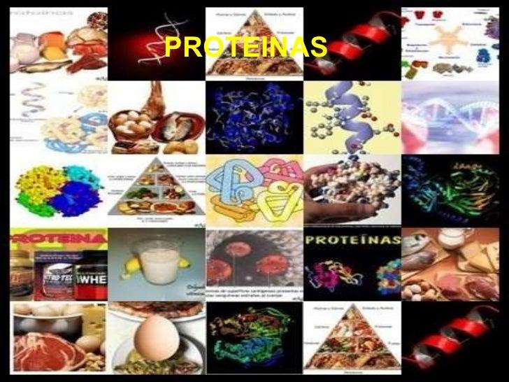5.  proteinas