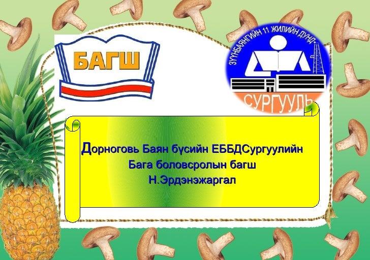 Дорноговь Баян бүсийн ЕББДСургуулийн       Бага боловсролын багш          Н. Эрдэнэжаргал