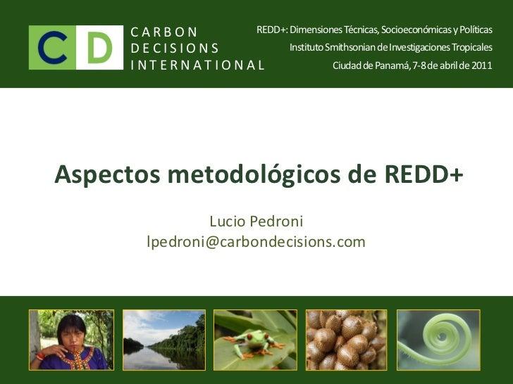 REDD Panama 2011 - Lucio Pedroni / Aspectos metodológicos REDD+