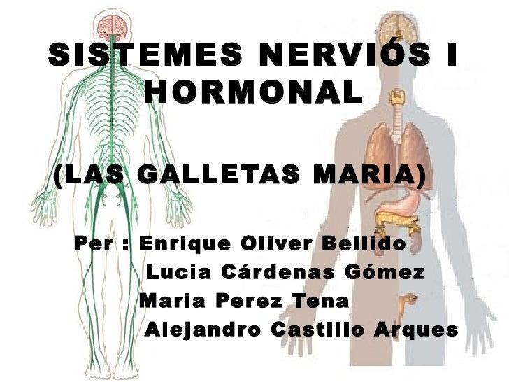 SISTEMES NERVIÓS I    HORMONAL(LAS GALLETAS MARIA) Per : Enrique Oliver Bellido       Lucia Cár denas Gómez       Maria Pe...