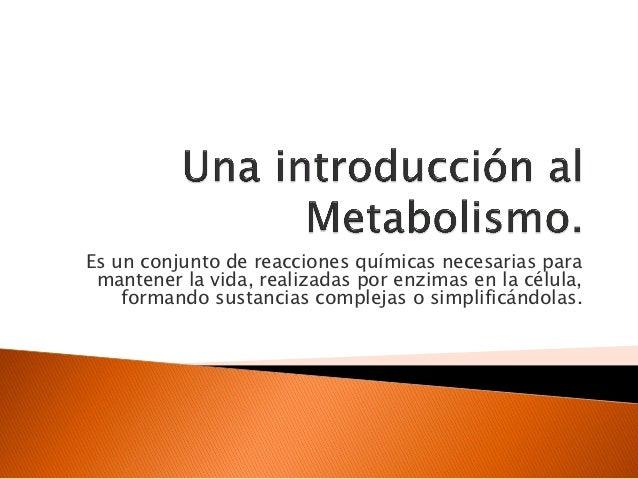 5. una introducción al metabolismo